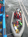 Diving from the Ocean Survey Vessel Bold