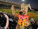 Bobber the Water Safety Dog high-fives fans