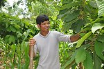 A farmer is learning to profit from cocoa in Dak Lak Province of central Vietnam.