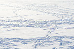 Snow background 3
