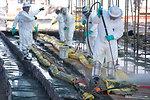 August 7, Over 2.1 million feet of oil boom deployed