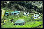 Uploaded by request of Deba Prasad Roy  Taken in