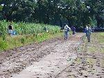 P1030983 broadcasting seed at Dirt Works Incubator Farm near Charleston SC during pollinator training June 2012