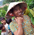USAID supports livelihoods in central Vietnam through cocoa farming