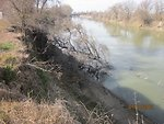 Erosion on Knights Landing levee