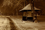 Shed in park at night in winter