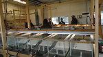 Visiting Saratoga National Fish Hatchery