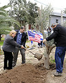 Ambassador Shapiro and Ms. Fisher Plant an Olive Tree