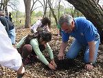 R3 RD Tom Melius helps plant seedlings