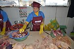 Disease Risk Reduction in Dong Ha Poultry Market, Quang Tri