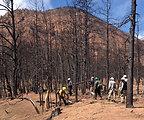 Waldo Canyon Partnership-a