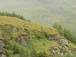 English:    Image title: Beautiful Scottish countryside Image from Public domain images website, http://www.public-domain-image.com/full-image/nature-landscapes-public-domain-images-pictures/hill-public-domain-images-pictures/beautiful-scottish-countrysi