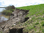 River Erosion in the Central Valley