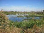 English:    Image title: Beautiful marsh wetland landscape Image from Public domain images website, http://www.public-domain-image.com/full-image/nature-landscapes-public-domain-images-pictures/wetlands-and-swamps-public-domain-images-pictures/beautiful-