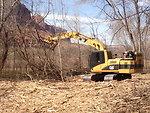 Mulching of Invasive Tamarisk