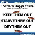 Cockroaches Trigger Asthma