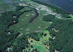 Connecticut River tideland habitat undergoing inva