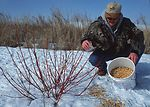 A Cass County, Iowa landowner provides winter food