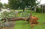 Tornado blows through Shaw