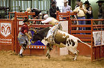 Airmen rope competition at rodeo world finals