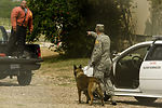 Military working dog handlers come together for joint competition