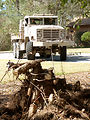 Eglin Airmen go to war with stumps, trees