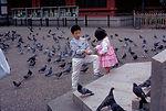 This image was taken while in Tokyo, Japan, Octobe