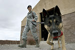Nellis MWD training