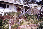 This was the outside of a house in Kariba, Rhodesi