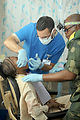 Air Force dentists bring relief to the Congo