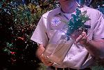 Worker holding jar containing mosquito larvae, Mia