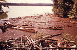 This 1976 photograph shows logs and debris at the