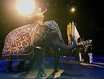 YOAFF & Circus