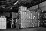 Stored boxes of swine influenza vaccine.