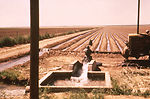 This 1976 photograph shows a Texas irrigation well