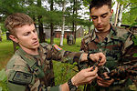Joint training in Vermont mountains