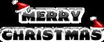 MERRY CHRISTMAS 2010 (2)