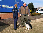Air Force Works Aggressively to Reduce Bird Strikes