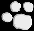 Footprint #2
