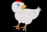 chicken-001-figure-color