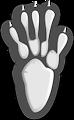 Footprint #5