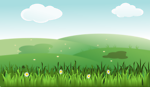 Green grass landscape