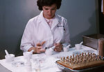 This CDC laboratory technician is shown here grind