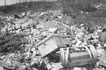 This historic 1915 image was captured at a dump si