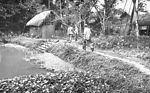 This was a typical Bangladesh rural village with i