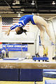 Falcon gymnasts compete against UC Davis