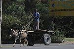 144 hours in Ethiopia: Into the Land of Plenty