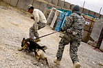 Bringing more bark to fight in Afghanistan