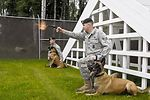 Working dogs at Elmendorf