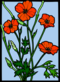 Coloured Poppy stained glass